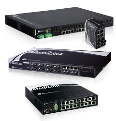 MultiLink Ethernet Switches