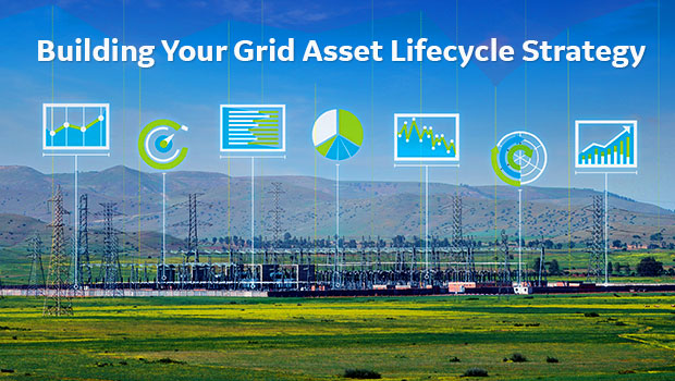 Grid Asset Lifecycle Strategy